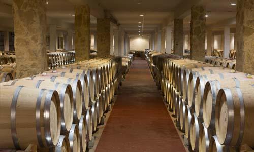 vinos torremilanos hoodegatel aranda de duero 6