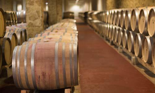 vinos torremilanos hoodegatel aranda de duero 7